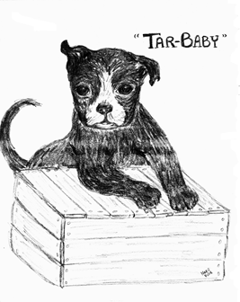 TAR-BABY